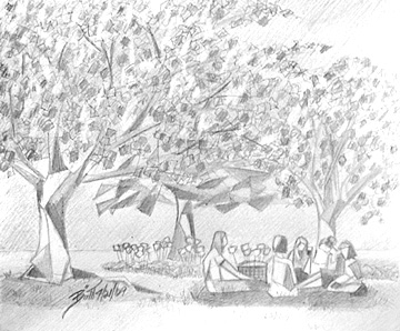 Cherry Blossom Afternoon 9x7.5 Graphite on paper