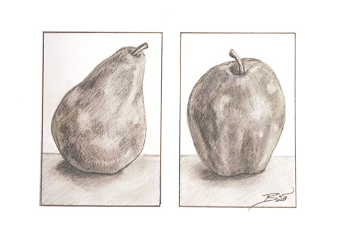 Still life Apple and Pear 7.5x 5.5 Graphite on paper